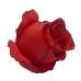 100_384 Голова Розы с окантовкой